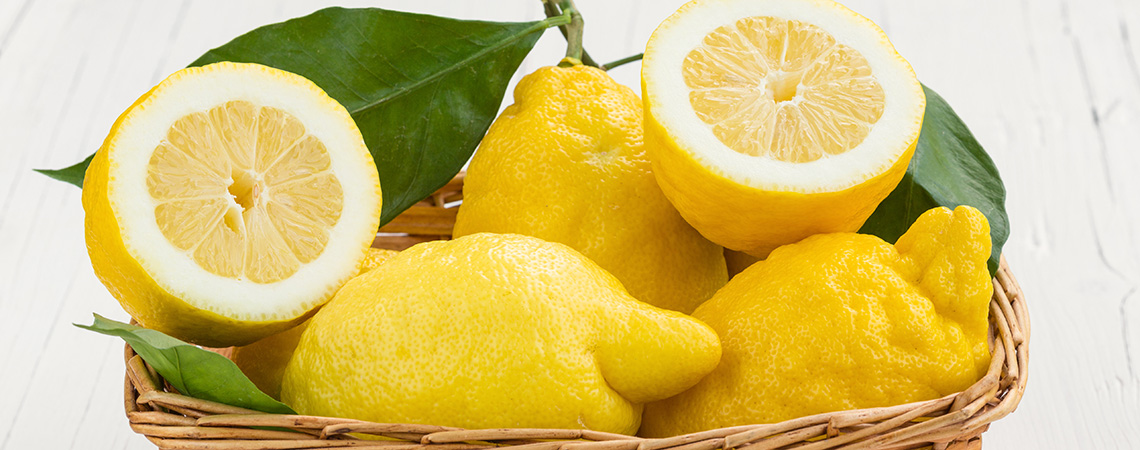 limoncello is made from delicious Amalfi lemons