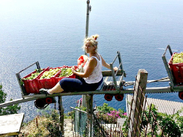 LocalWonders Travel Group Tours to Italy - Fun Facts Cinque Terre Winemaking