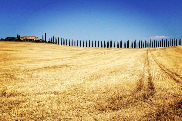 Toscana_Vald'Orcia - CORTA
